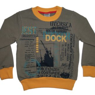 Реглан для мальчика «Dock», темно серый, р.104/122, Deniz