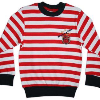 Реглан  полоска для мальчика, красно-белый р.110,110,116,122 Deniz